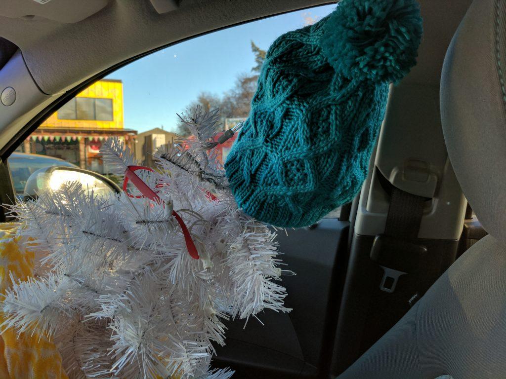 1_twiggy-in-the-car